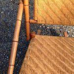 Cascadia Caning (WA).jpg