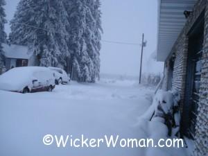 Angora-MN-snow-4-2012