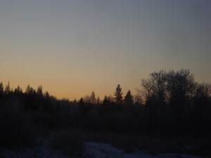 early-february-winter-sunrise
