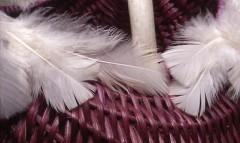 Detail of Aubergine Funk, Antler Melon Basket