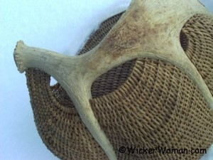 Cathryn Peters moose antler basket
