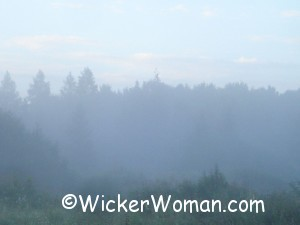 early morning fog angora 7-13