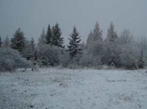 first snow fall of 2011