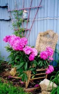 wicker rocker plant stand