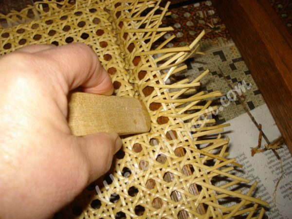 using a wooden caning wedge to press cane webbing into groove