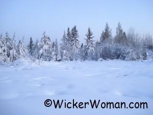 snow7-treeyard-4-16-2012