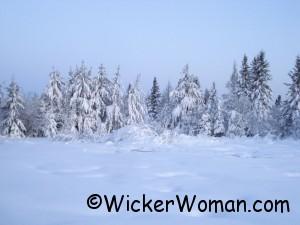 snow8-treeswhite-4-16-2012