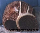 Stand Alone Antler Basket Sculpture